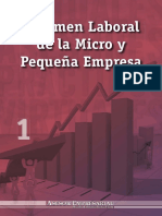MEP_Formalizacion_TramitesLaborales_Reporte -LeyMYPEGuiaCompleta.pdf
