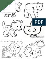 Tipos de Piel en Animalitos