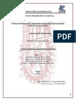 244863423 Practica 6 Pruebas Bioquimicas