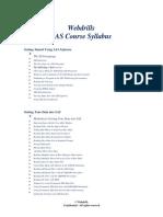 Wwebdrills SAS Analyst Brochure
