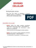 6.-divisãocelular.pdf