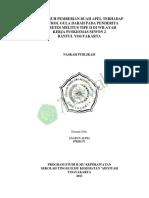 NASKAH PUBLIKASI ANATUN AUPIA  070201171 .pdf