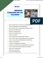 Guia Práctica%c2%a0 Para El Criador de Palomas Amateur