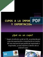 Cupos a La Importacion y Exportacion