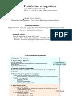 MagnM1Phys2010-I.pdf