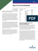 Análisis de cromolitografía de gases