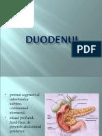 DUODENUL_0
