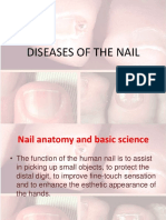 structre of the nail
