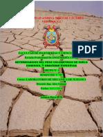 Informe 2 PESOS v., ...