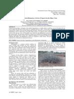 Research 2.467592902-4787-459a-92d8-a4dda1ec32a9.pdf