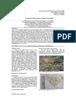Research 28-32bf6fddce-9b68-42d8-80a6-e5f71aec1958.pdf