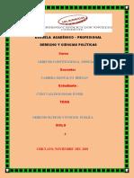 Los Derechos Politicos y La Funcion Publica