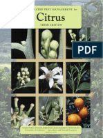 Fruit Disorders in Citrus