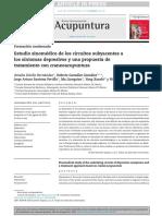 Estudio Sinomedico de Los Circuitos Subyacentes a la medicina