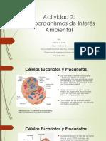 Actividad 2 Microbiologia Ambiental