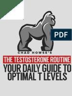 The Testosterone Routine eBook