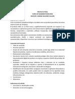 Indicaciones del proyecto final.pdf
