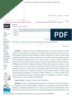 Princípios Constitucionais e Sua Aplicação No Direito Processual - Artigos - Conteúdo Jurídico