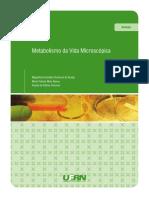 Met_Vid_Mic_Livro_WEB.pdf