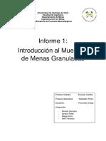 Informe 1 Procesos Mineralurgicos