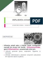 Influenta Aviara Curs 2016 (1)