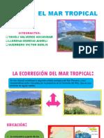 El Mar Tropical