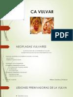 CA VULVAR