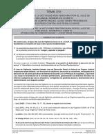 actualizicon_tema16_pags_1_2_5_14.pdf