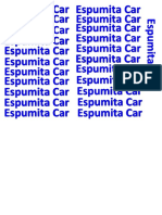 espumita car.docx