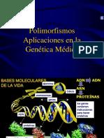 Polimorfismos_1(2)