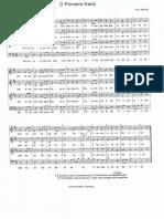 O primeiro natal 02.pdf