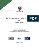 Informe Emse 2004-2005 Final
