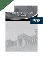 IV Pleno Jurisdiccional Nacional