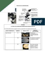 Practica No2 Microscopia