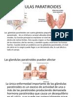exposicion anatomia del sistema nervioso.pptx