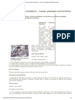 Ciclos Econômicos Brasileiros – Resumo