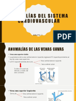 Anomalías Del Sistema Cardiovascular