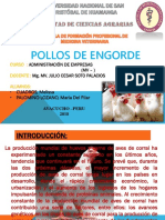 Proyecto Pollos Broilers