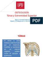 torax.pdf