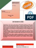 AVANCE SEMANA 9 Gestion de recursos humanos ( con rof , mof y mp).pptx