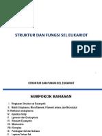 III. 2 Struktur Dan Fungsi Sel Eukariot