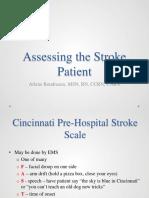 Assessing the Stroke Patient Boudreaux 2013