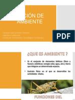 Clase 2. Nociones de ambiente.pdf