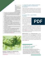 Audesirk.pdf