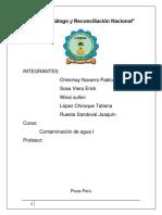 Año del Diálogo y Reconciliación Nacional pablo.docx