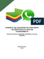 Formato de archivo en WhatsApp / BlueStacks y el uso de etiquetado
