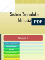 sistemreproduksimanusia-140416211350-phpapp02