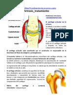 Artrosis en Mascotas_tratamiento
