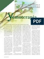 Artículo Yemoterapia VN