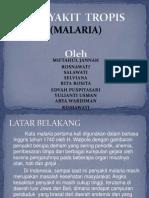 Kelompok 1 Malaria